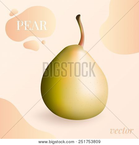 Pear Isolated Vector. Pear Isolated Vector Illustration In 3d Photo-realistic Style. Yellow Pear Iso