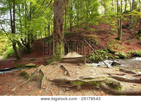 Old wooden bridge on mountain river under old tree
