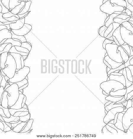 Jasminum Sambac - Arabian Jasmine Outline Border. Vector Illustration.