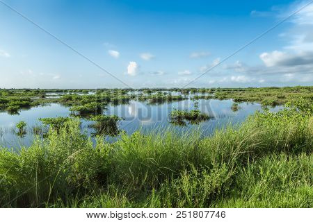 This Is A View Of The Wetlands At The Merritt Island National Wildlife Refuge. Range Of Habitats, Fr