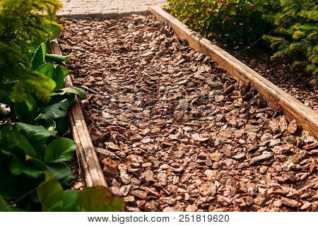 Footpath With Tree Chips Ecological Vegan Gluten Free