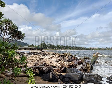 Waves Along Rocky Shore With Drift Wood With Naupaka Plant On Shore At Lydgate Park On Kauai.