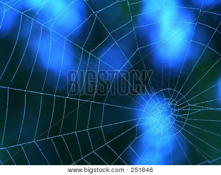 Blue Spider Web