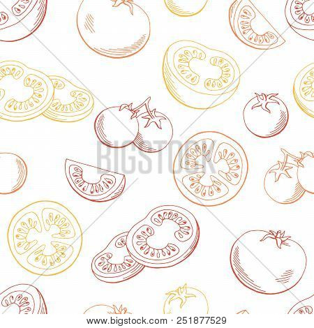 Tomato Graphic Red Yellow Color Sketch Seamless Pattern Background Illustration Vector