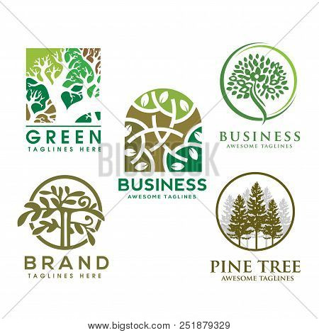 Green Tree With Leaves Logo. Herbal Leaf Circle, Ecology, Natural, Organic Label Or Logo, Tree Vecto