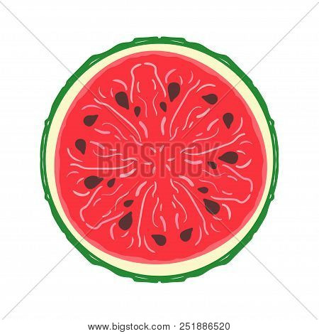 Sliced Colored Sketch Style Fruit Watermelon Isolated On White Background. Half Of Fruit. Bio Food V