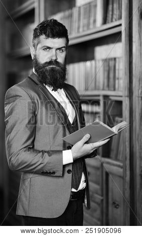Mature Man With Confident Face And Long Beard. Confidence, Success, Education, Research, Literature