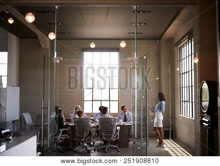 Businesswoman presenting to colleagues at boardroom meeting
