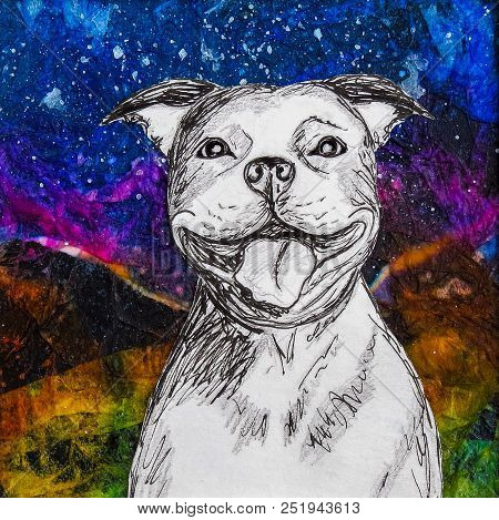White Smiling Staffy Dog Drawing On Colourful Night Background. Original Artwork Mixed Media Collage