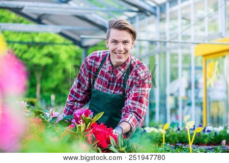 Handsome young man smiling happy while working as florist in a modern flower shop with various ornamental potted houseplants for sale