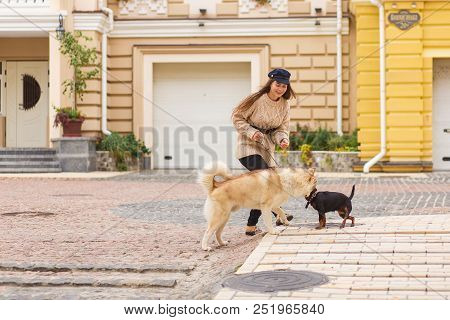 Girl Is Playing In The Vintage Vozdvizhenka Street With Two Dogs. City Petsfriendly Lifestyle