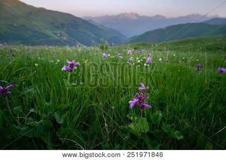 Summer Landscape Of A Mountain Valley With A Chaukhi Mountain Range At The Background. Mountains At