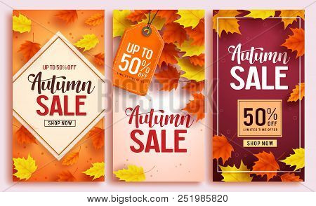 Autumn Sale Vector Poster Design Set With Colorful Maple Leaves Element In Background And Sale Disco