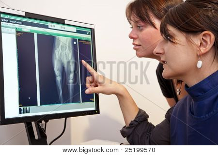 veterinarian explaining x-ray picture