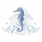 seahorse bay - retro summer design element with seahorse (grunge is removable) poster