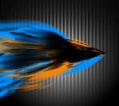 Abstract composition in blurred wave. Multiple colors. poster