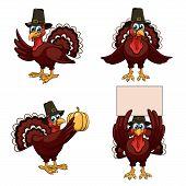 Four cartoon thanksgiving turkeys in a pilgrim hats on white background poster