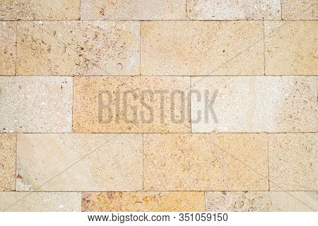 The Decorated Wall Is Made Of Carved Pressed Shell Rock. Large Inclusions Of Shells On A Light Yello