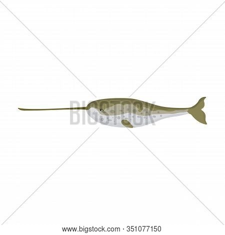 Narwhal Whale Vector Icon.cartoon Vector Icon Isolated On White Background Narwhal Whale.