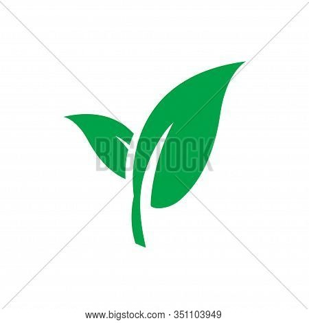 Green Leaf Vector Icon Isolated. Recycle Ecology Icon. Natural Leaf Icon. Eco Nature Healthy Concept