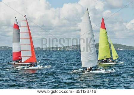 Children Sailing In Small Colourful Catamaran Sailboats. Teamwork By Junior Sailors Racing On Saltwa