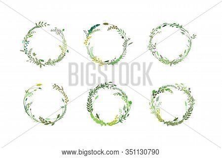 Round Border Made Of Hand Drawn Herbs And Flowers. Floral Wreath. Herbal Frame. Greenery Set Isolate