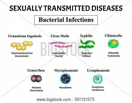 Syphilis, Spirochaete, Treponema, Gonococcus, Gonorrhea, Chlamydiosis, Chlamydia, Mycoplasma, Ureapl