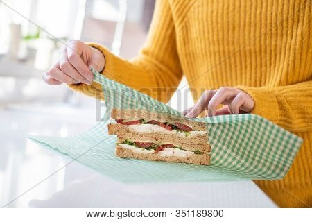 Close Up Of Woman Wrapping Sandwich In Reusable Environmentally Friendly Beeswax Wrap