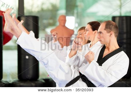 Leute im Fitnessstudio beim Training von Kampfsport, es geht um Taekwondo, der Trainer hat den schwarzen G�¼rtel