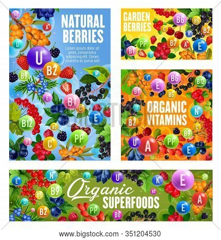Vitamins And Minerals In Berries With Vector Fruits Of Cherry, Strawberry And Blueberry, Raspberry,