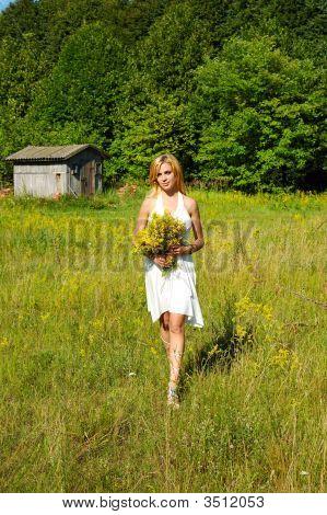 Meadow#4