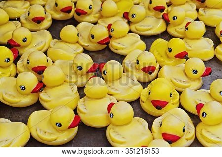 Group Of Yellow Rubber Ducks Closeup View. Rubber Duck Race Is Type Of Fundraising Event Where Thous