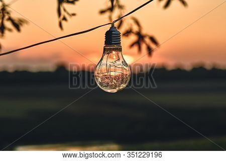Vintage Light Bulbs On String Wire Against Sunset Decor In Outdoors Wedding Party