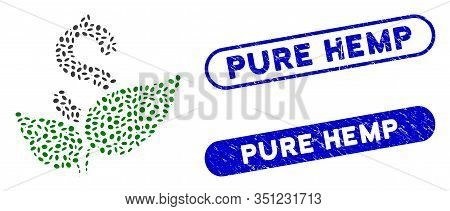 Mosaic Agriculture Startup And Distressed Stamp Watermarks With Pure Hemp Phrase. Mosaic Vector Agri