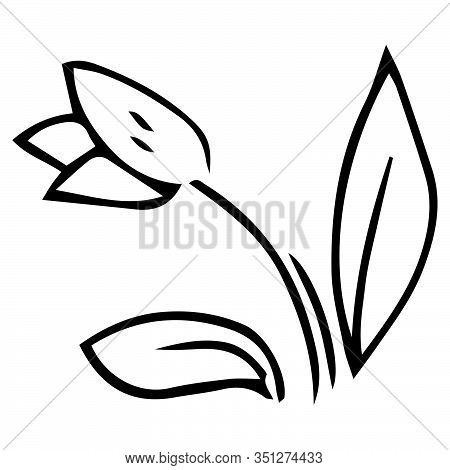 Tulip Icon. Vector Illustration Of A Spring Tulip.hand Drawn  Planted Spring Tulip.