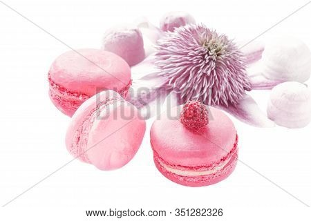 Raspberry And Strawberry Pink Macaroons On The Bed Decor Valentine And Pink Flowers Isolated Delicat