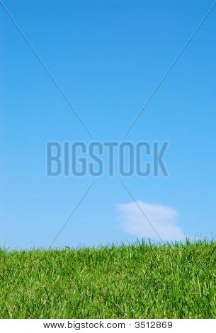 Grass#4