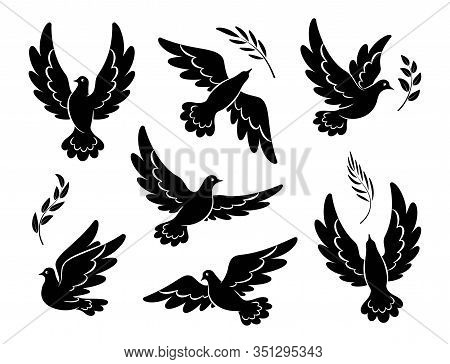 Flying Dove Black Silhouettes.  Pigeons Set Peace And Love Symbols. Dove With Olive Branch Christian