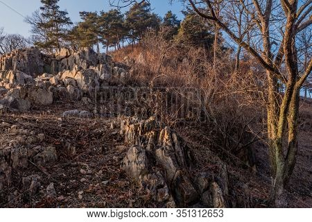 Large Craggy Boulders On Mountainside With Evergreen Trees On Top In Background,