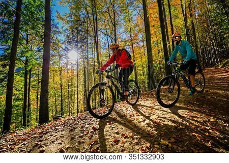 Cycling, mountain bikeing woman on cycle trail in autumn forest. Mountain biking in autumn landscape forest. Couple cycling MTB flow uphill trail.