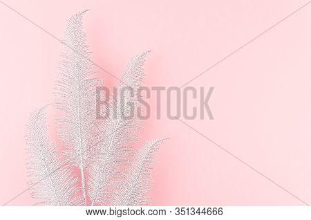 Simple Modern Bright Festive Background - Sparkle Silver Palm Branch As Border On Pastel Pink Backdr