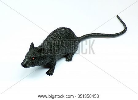 Mouse Isolated On A White Background. Artificial Mouse Toy Close-up. Black Rubber Rat As A Toy For A