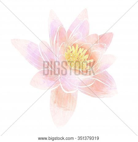 Delicate Pink Flower Of Lotus Isolated On White Background. Mix-media Design. Digital Painting And W