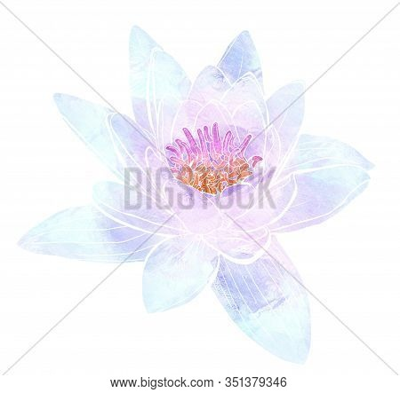 Delicate Flower Of Lotus Isolated On White Background. Mix-media Design. Digital Painting And Waterc
