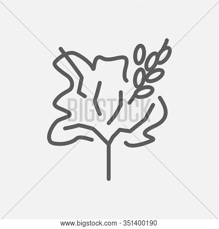 Blackthorn Tree Icon Line Symbol. Isolated Vector Illustration Of Icon Sign Concept For Your Web Sit