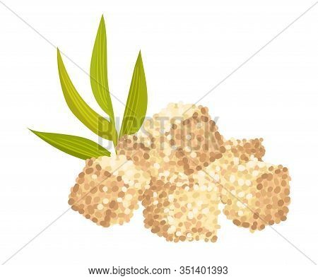 Sugar Cane Green Sprout With Pile Of Refined Sugar In Cubes Vector Illustration