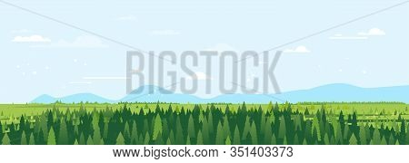 Spruce Forest In Summer Day Landscape Background In Simple Geometric Form, Forest To Horizon Of Gree
