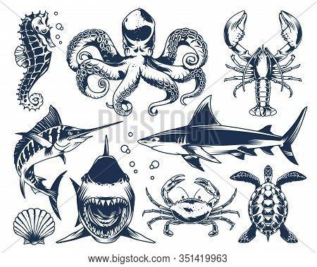Sea Animals Vintage Set With Seahorse Octopus Shark Crab Lobster Swordfish Seashell Turtle On Light
