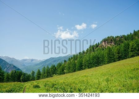 Beautiful View To Green Forest Hill With Rock And Great Mountain Range. Awesome Minimalist Alpine La