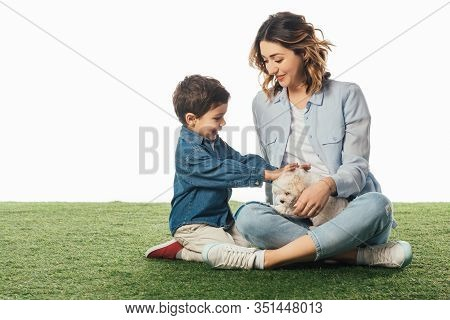 Smiling Mother Looking At Son And He Stroking Havanese Puppy Isolated On White